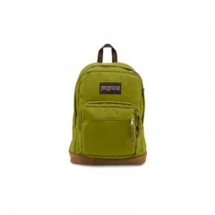 Jansport Righ Pack Digital Edition Green ( T58T35K )